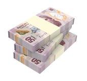 Pesos mexicanos isolados no fundo branco ilustração stock