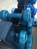 Pesos pequenos na cremalheira do gym Fotos de Stock