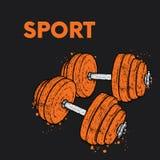 Pesos tirados no vetor Ilustração para um cartão ou um cartaz Beleza, força e saúde esporte Estilo de vida saudável Weightl ilustração do vetor