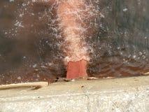 Pesque águas residuais de derramamento da tubulação da efluência da fábrica com sangue e entranhas de peixes processados no mar Imagem de Stock Royalty Free