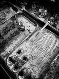 Pesque el departamento Mirada artística en blanco y negro Imagen de archivo libre de regalías