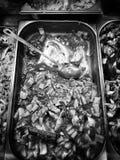 Pesque el departamento Mirada artística en blanco y negro Foto de archivo