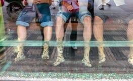Pesque el tratamiento del cuidado de piel de la pedicura de los pies del balneario con el garra del rufa de los pescados Foto de archivo libre de regalías