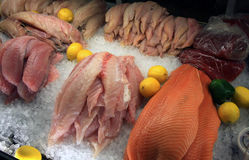 Pesque em um mercado de peixes Imagens de Stock Royalty Free