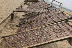 Pesque la mentira en las redes, secadas en el sol, Foto de archivo libre de regalías