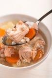Pesque la sopa con el perlé de los salmones y del orge en cuchara Imagen de archivo