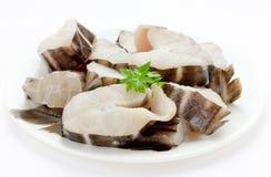 Pesque a quimera, o coelho do mar ou o rato do mar no fundo branco Fotos de Stock Royalty Free