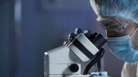 Pesquisa de condução do cientista médico da amostra de sangue para doenças hematológicas Imagem de Stock Royalty Free