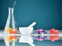 A pesquisa orgânica erval natural da droga e os produtos vidreiros de laboratório, o químico e a planta extraem substâncias no al fotos de stock