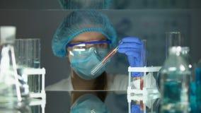 Pesquisador que toma o tubo com amostra da carne, qualidade de alimento, análise veterinária filme
