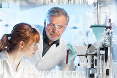 Pesquisadores dos cuidados médicos que trabalham no laboratório científico fotografia de stock royalty free