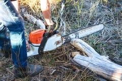 Pessoa com madeira do corte da serra de cadeia fotos de stock