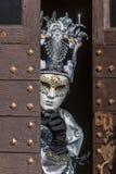 Pessoa disfarçada - carnaval Venetian 2014 de Annecy imagem de stock royalty free