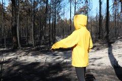 Pessoa em uma floresta queimada Imagens de Stock Royalty Free