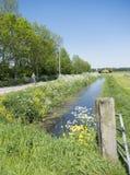 A pessoa na bicicleta passa flores de florescência na estrada secundária entre Utrecht e Houten em holland Fotos de Stock