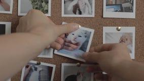 A pessoa põe a foto do gato retira-a então video estoque