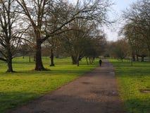Pessoa que anda em um parque Fotografia de Stock Royalty Free