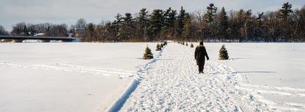Pessoa que cruza um rio congelado fotos de stock