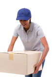 Pessoal fêmea da entrega que leva a caixa pesada da caixa Imagens de Stock