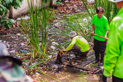 Pessoal municipal de Banguecoque no trabalho de dragagem do canal para despejar o vegetatio imagens de stock