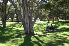 Pessoas idosas no parque Fotos de Stock Royalty Free