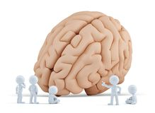 Pessoas pequenas em torno do cérebro gigante Isolado Contem o trajeto de grampeamento Fotografia de Stock Royalty Free