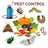 Pest control concept royalty free illustration