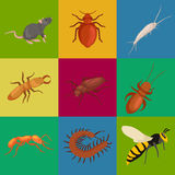 Pest control concept with insects exterminator silhouette flat vector illustration. Set Royalty Free Stock Images