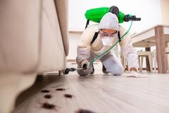 The pest control contractor working in the flat. Pest control contractor working in the flat stock images