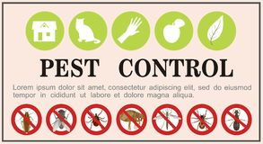 Pest control insects flat icons on the banner. Vector illustration. Vector banner with insect icons of pests of a cockroach and a tick, fleas and a spider, a Stock Photo