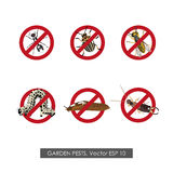 Pest control. Set of prohibition signs on white background Royalty Free Stock Photo