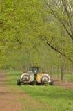 Pest control spraying on fruit trees Stock Photo