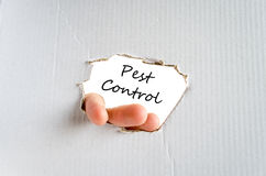 Pest control text concept. Over white background Stock Photos