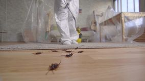 Pest control worker with sprayer standing at home