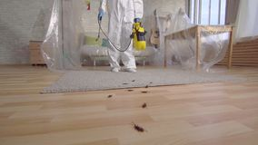 Pest control worker with sprayer standing at home slow mo,concept of disinfection of premises