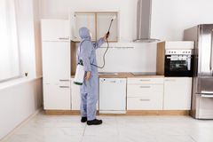 Pest Control Worker Spraying Pesticide On Shelf. Pest Control Worker In Workwear Spraying Pesticide On Shelf In Kitchen Stock Photos
