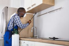 Worker Spraying Pesticide With Sprayer Stock Image