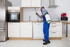 Worker Spraying Pesticide With Sprayer. Pest Control Worker Spraying Pesticide With Sprayer In Kitchen stock photo
