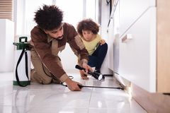 Pest Control Worker With Torch Spraying Pesticide. Woman Looking At Male Pest Control Worker With Torch Spraying Pesticide On Wooden Cabinet Stock Image