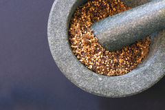 Pestello e mortaio con il seme di senape Fotografie Stock Libere da Diritti