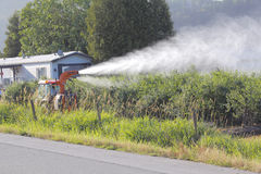 Pesticide Application on Fruit Crop Royalty Free Stock Images