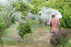 Pesticide de pulvérisation image libre de droits