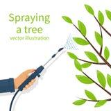 Pesticide de pulvérisation Traitement des arbres illustration stock