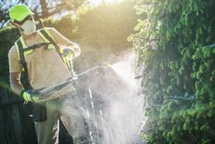 Pesticide Plants Spraying. Pesticide Garden Plants Spraying with Professional Equipment by Caucasian Gardener in His 30s stock image