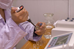Pesticide residue testing. Laboratory testing of pesticide residues in the do Stock Photography