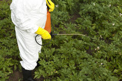 Pesticide spraying Stock Photography