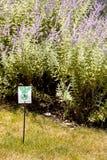 Pesticide warning sign Royalty Free Stock Photos