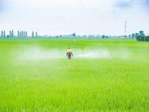 Pesticides de jet d'agriculteur Photographie stock libre de droits