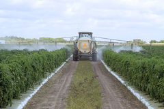 Pesticides de pulvérisation - 1 Images libres de droits