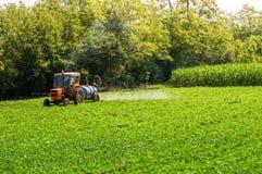 Pesticides de pulvérisation de vieux tracteur sur le haricot de soja photos stock